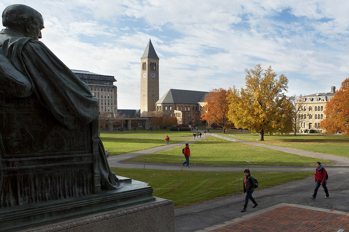 cornell college of agriculture and life sciences supplement essay College essay coaching cornell admissions information cornell university ithaca, ny agriculture and life sciences, human ecology.