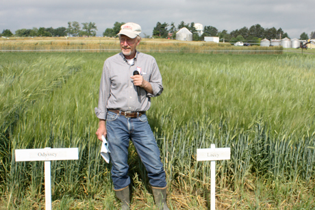 Mark Sorrells in barley field
