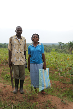Small-holder producers of cassava in Africa.