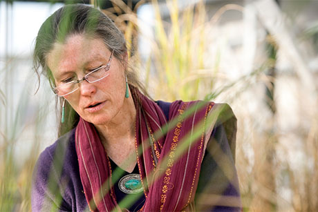 Susan McCouch, professor of plant breeding and genetics and of plant biology, is a world expert on rice breeding and genetics. Robert Barker/University Photography