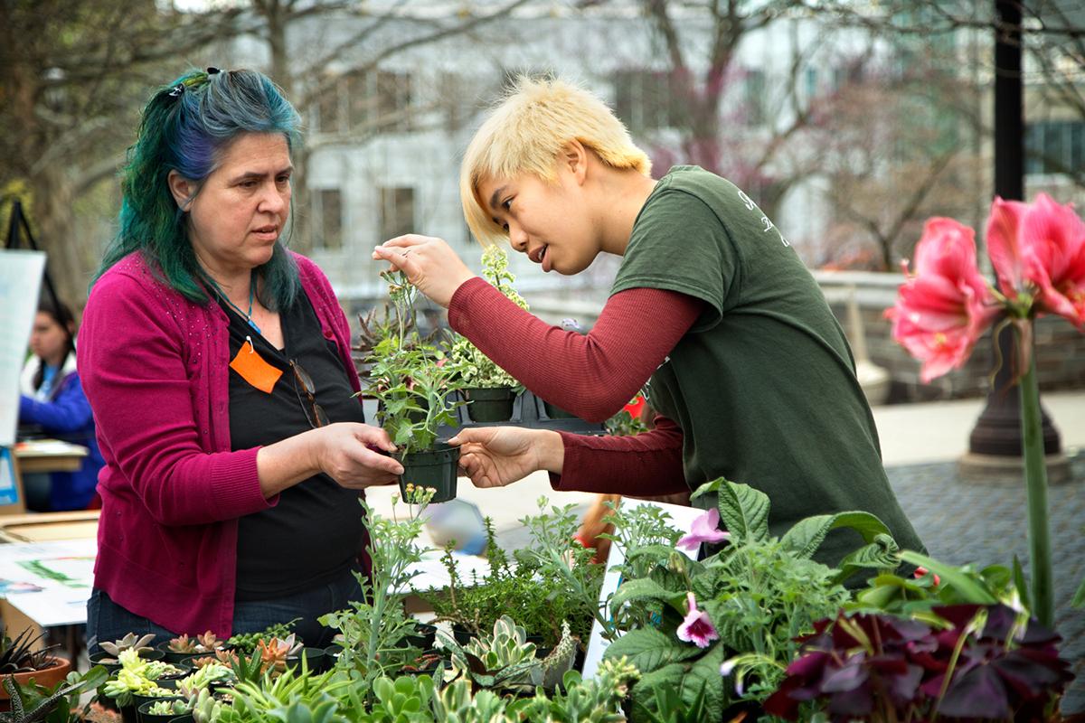 Hortus Forum plant sale brings some color to Ho Plaza during Spring Fest, April 20.