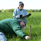 Study: Winter harvest boosts feedstock security
