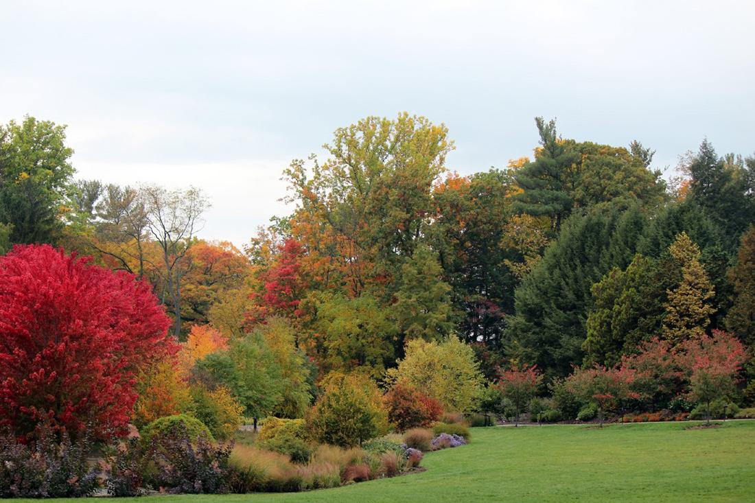 Board approves Cornell Botanic Gardens naming | Cornell Chronicle