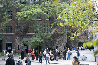 Artist Patrick Dougherty's Collegetown sculpture