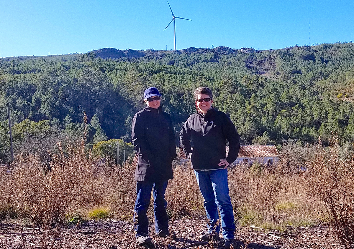 Cornell researchers map wind to better harvest energy