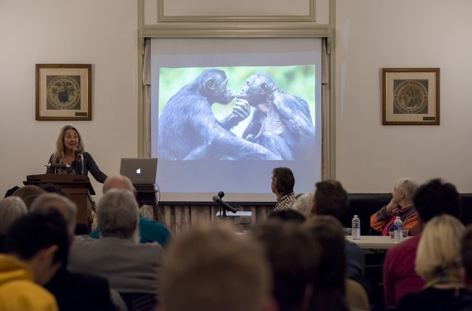 Robyn WIshna/Provided Sally Coxe, co-founder and president of the Bonobo Conservation Initiative, discusses new perspectives on preserving nonhuman great apes in sustainable ways at a Nov. 15 forum in the A.D. White House�s Guerlac Room.