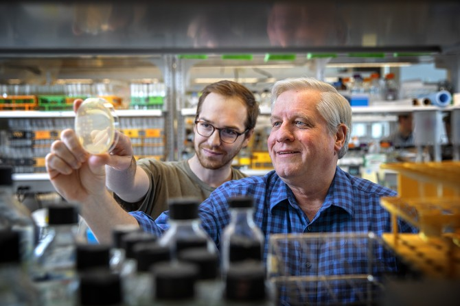 Scott Emr and Jeff Jorgensen examine a new yeast mutant