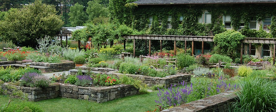 Garden painting and gardening workshops | Cornell Chronicle