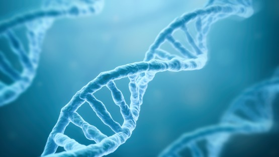 CRISPR-Cas3 innovation holds promise for disease cures, advancing science | Cornell Chronicle