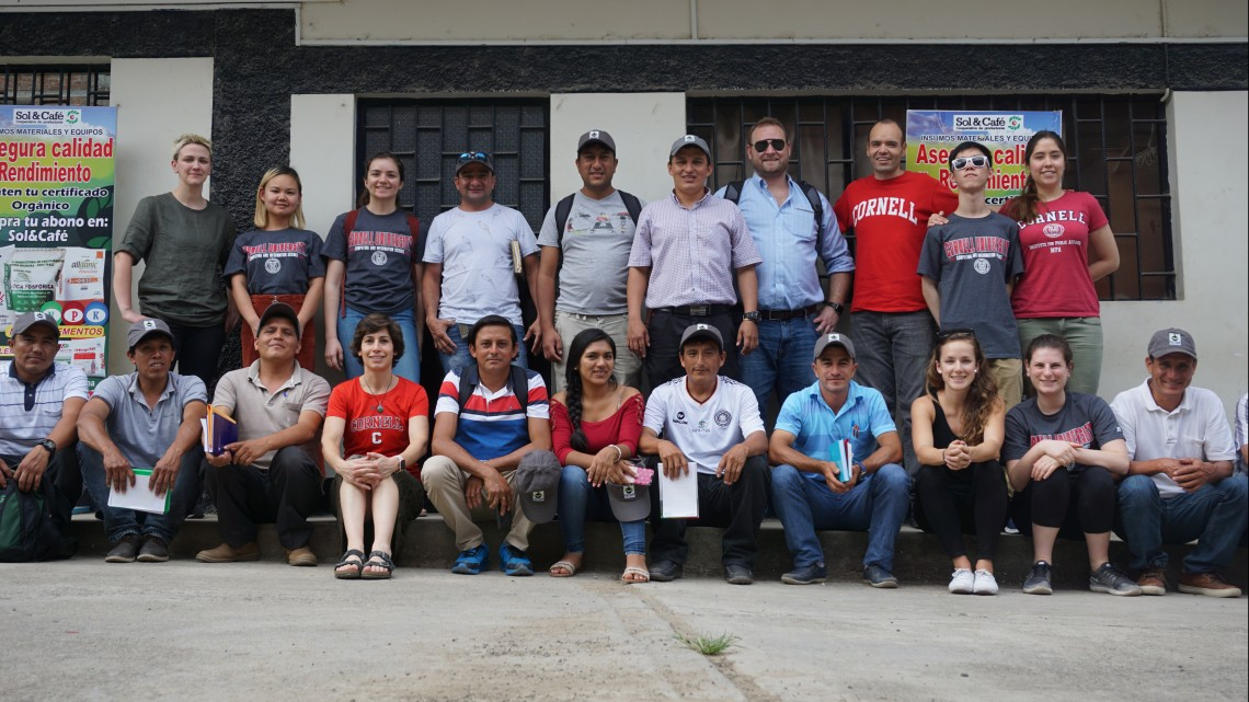 Peru coffee program