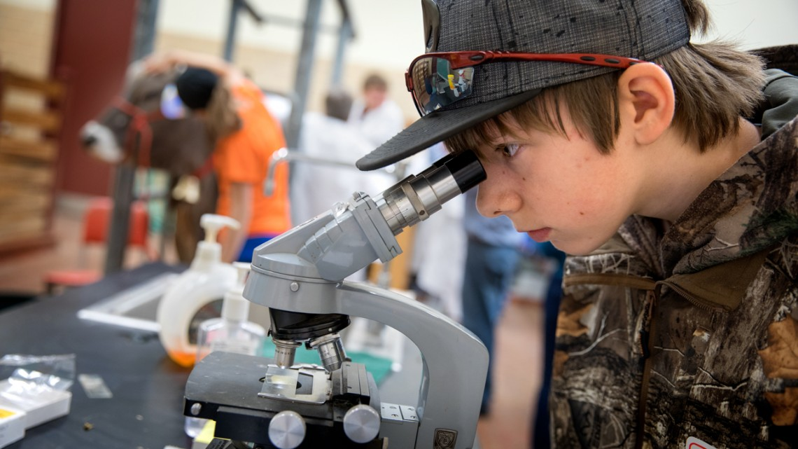 child looking through a microscope
