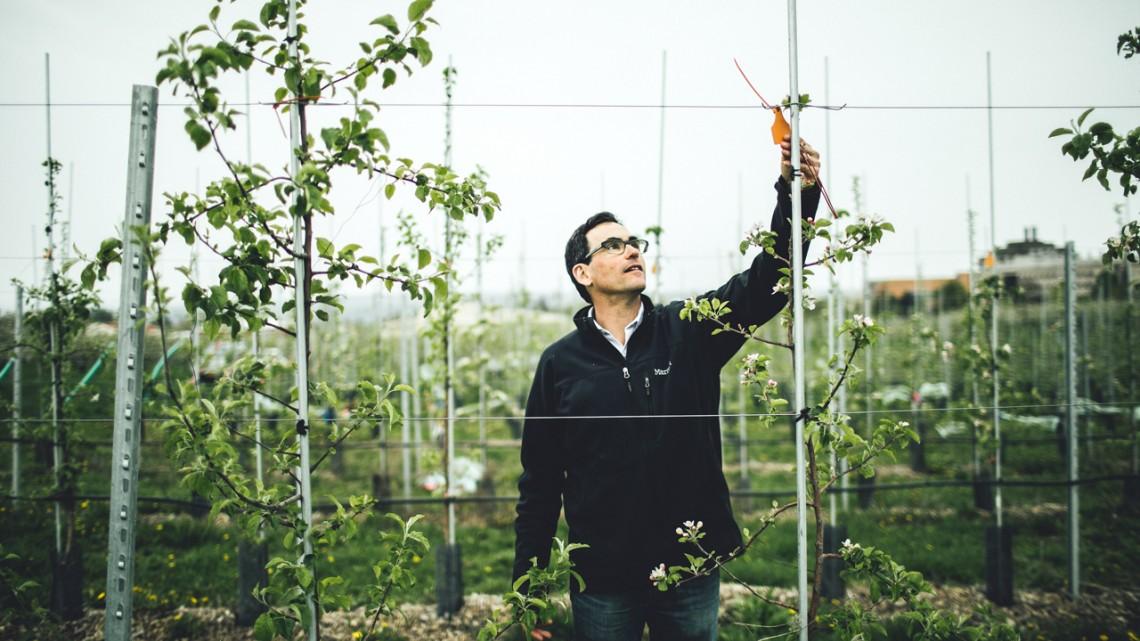 Greg Peck assistant professor of horticulture
