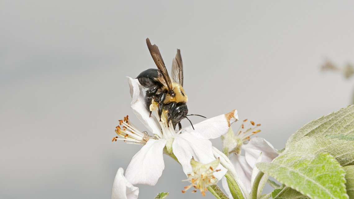 Kent Loeffler/Provided
