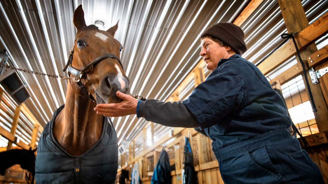 Dr. Barbara Mix treats horse