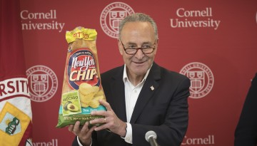 Schumer chips