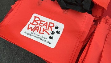 BEAR Walk bag