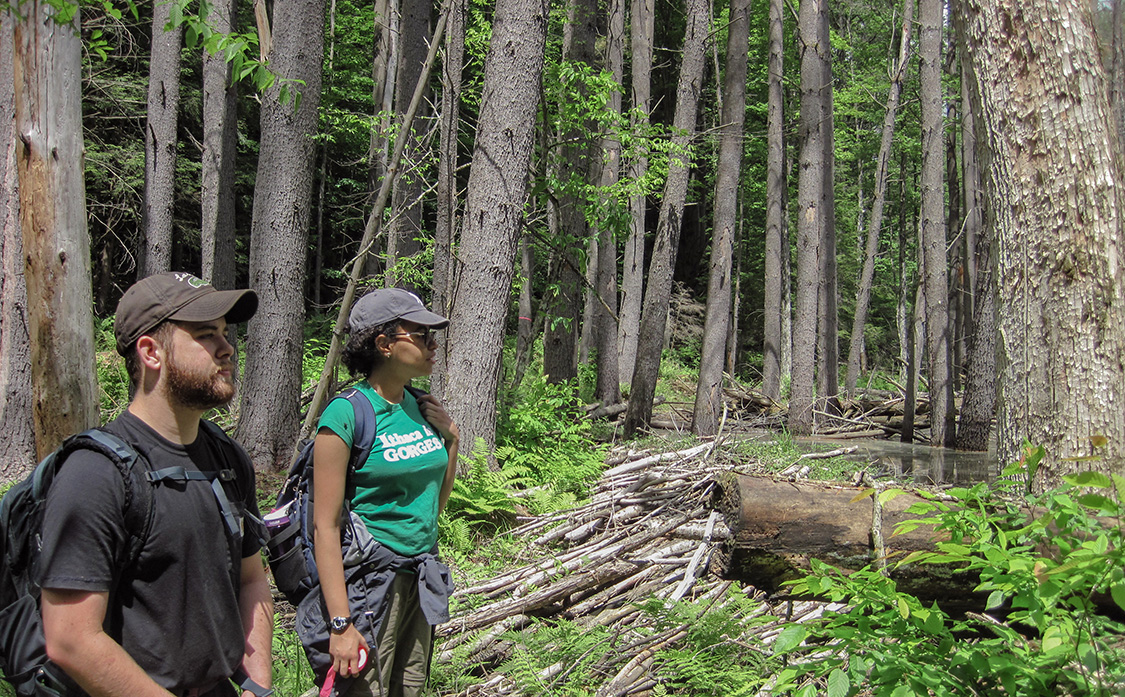 Tyler Shaban '17, left, and Jailene Hidalgo '18 conduct research in the Adirondacks