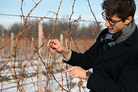 Kovaleski checking vines