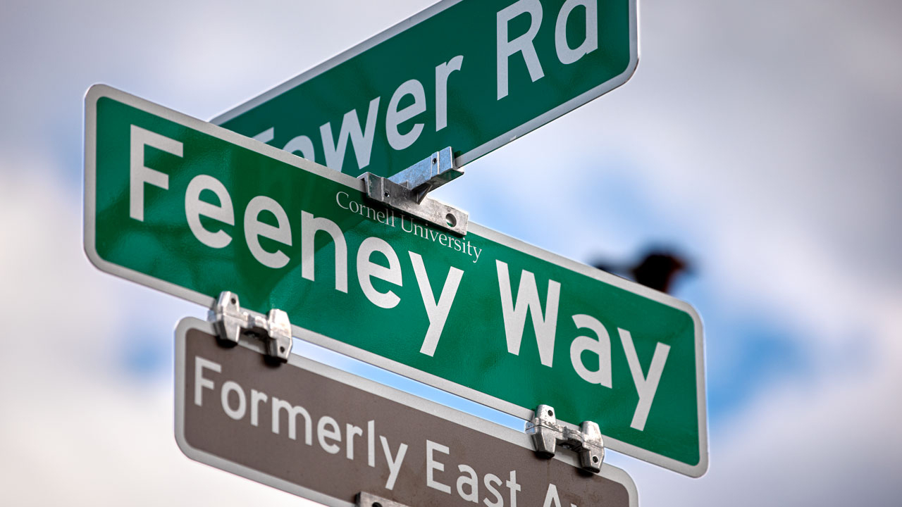 New signage at the corner of Feeney Way and Tower Road.