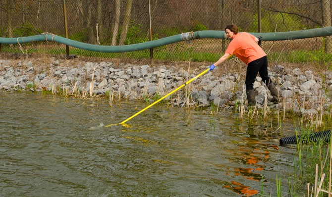 Betsy Bihn obtains water sample