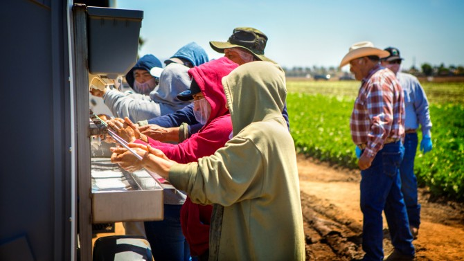 Farm workers wash hands