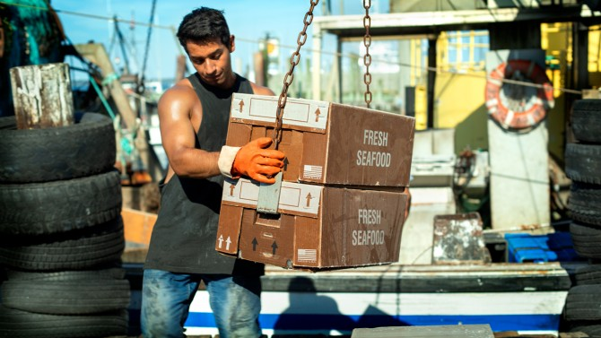 Man on Dock Unloading Boxes of Seafood