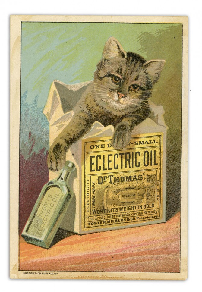 Dr. Thomas's Eclectric Oil, distributed by Foster