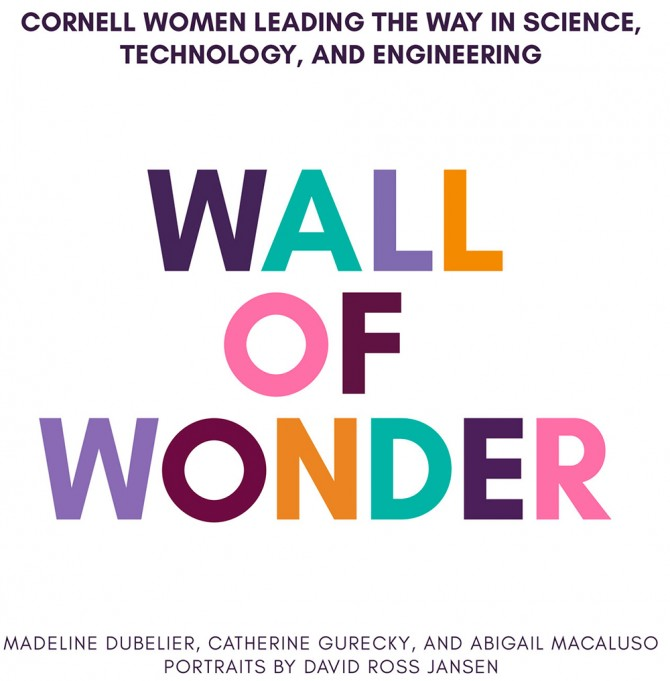 Wall of Wonder cover