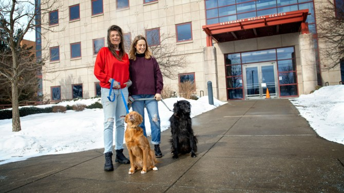 Two dogs donated blood samples to the Cornell Veterinary Biobank