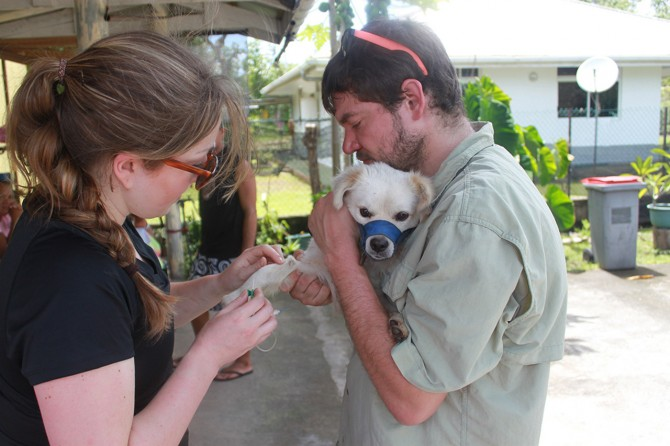 collecting sample from a dog in French Polynesia