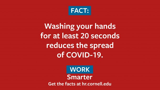 Fact: Washington your hands for at least 20 seconds reduces the spread of COVID-19. Work Smarter. hr.cornell.edu