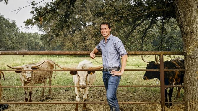 Ben Houlton with bulls