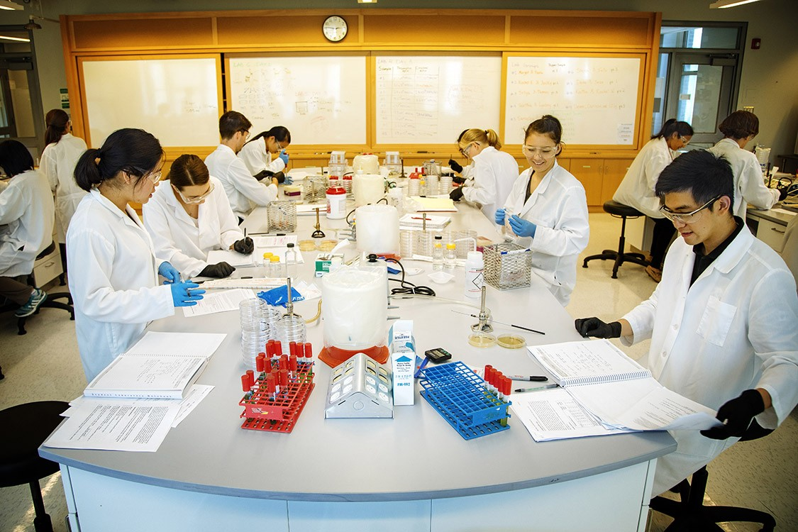 cornell science lab majors university engagement recipe work testing cs koski jason