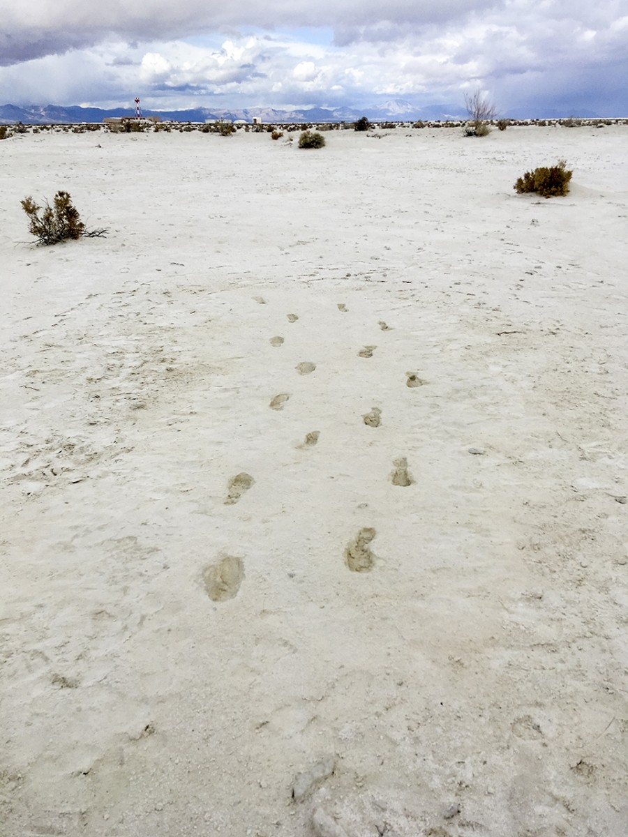 1015_footprints1.jpg?itok=O0SmrTER