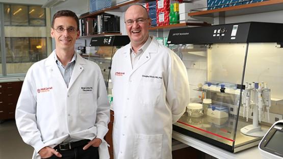 New Weill Cornell Medicine investigators hunt for HIV cure