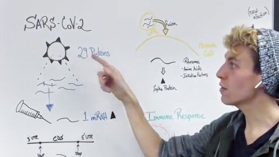 Students' vaccine videos go viral   Cornell Chronicle