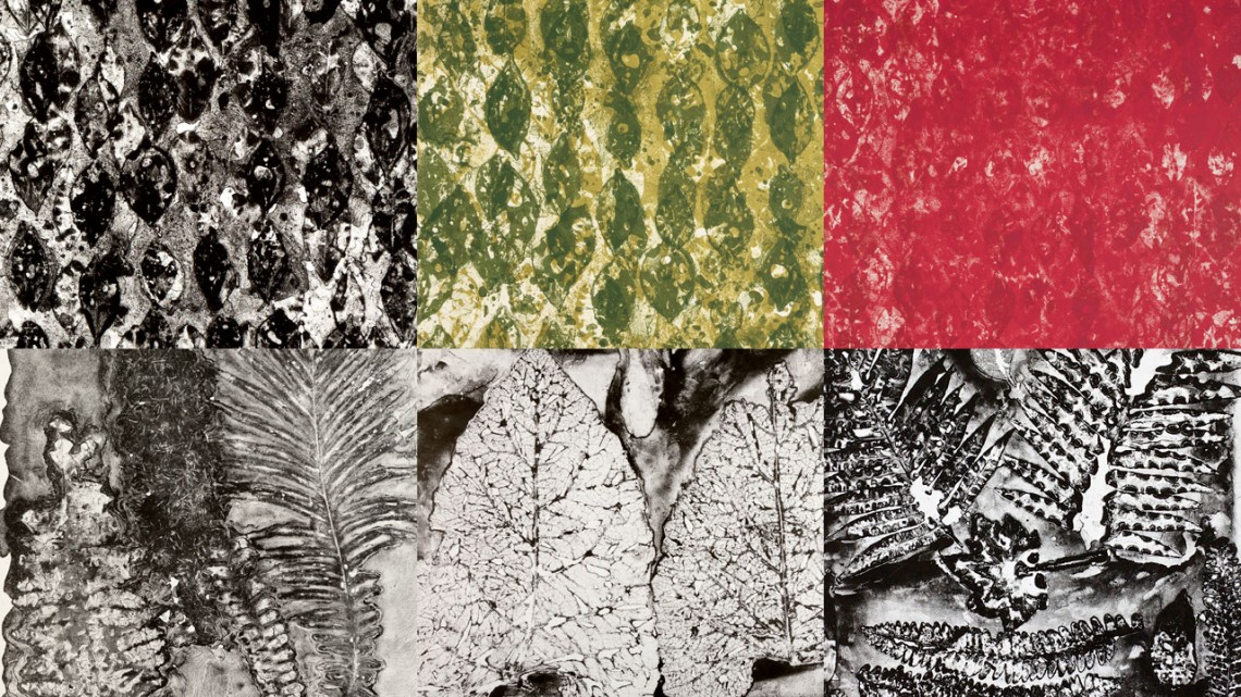 These details from prints by Greg Page, associate professor of art