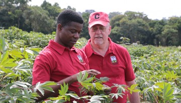 Cassava researchers