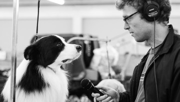 Hoff interviews dog