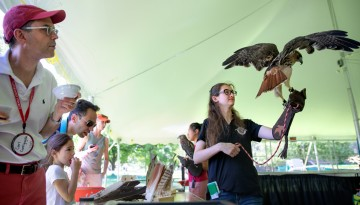 Reunion attendees meet a falcon and its handler.