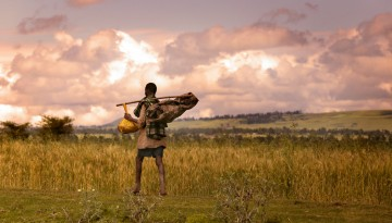 Ethiopian man walking on farmland