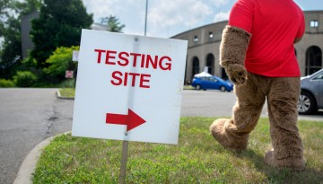 Big Red Bear at Covid testing site