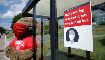 Big Red Bear at bus stop with mask sign