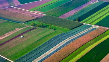 Crop view from the sky