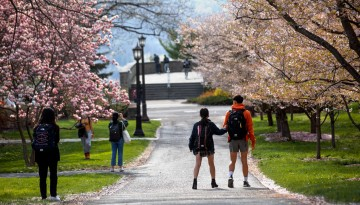 Students pause to enjoy the fleeting cherry blossoms near Sage Chapel.