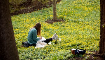 A student does some work while sitting on the grass.
