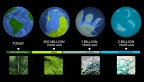 Earth's biological milestones as a Rosetta stone